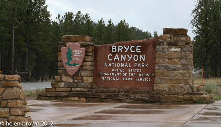 Bryce #22