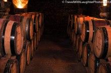 Joseph Drouhin Winery-4865