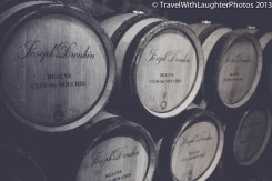 Joseph Drouhin Winery-4869