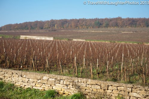 Wine Tour-4830