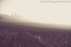 Wine Tour-4832