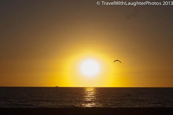 st. pete's sunset-5783
