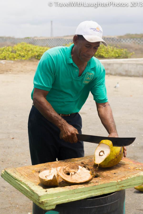 Coconut-8270