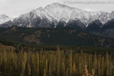 Drive to Jasper-9913