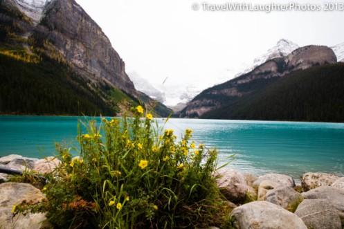 Lake Louise-9958