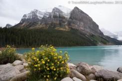 Lake Louise-9960