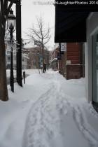 Feb 2014 snow-1049
