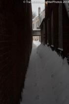 Feb 2014 snow-1051