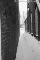 Feb 2014 snow-1052