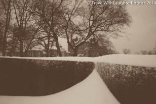 Feb 2014 snow-1058