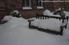 Feb 2014 snow-1071