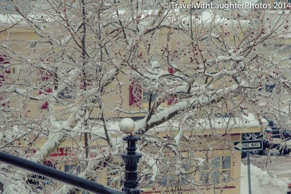 Ice storm 2014-1039