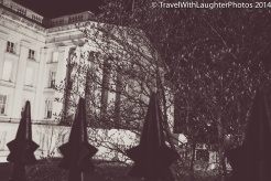 Washington DC March 2014-0151