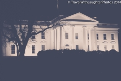 Washington DC March 2014-0157