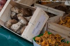 Cepes mushrooms