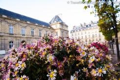 France 2013-0948