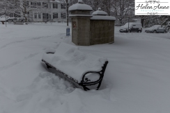 Benches are calling for summer!