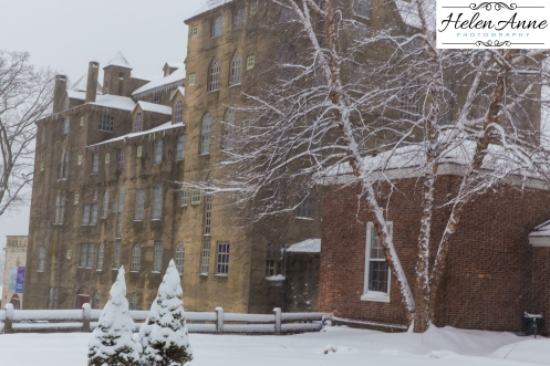 Snow March 2015-4391