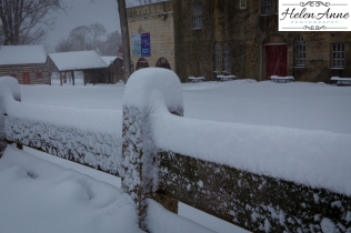 Snow March 2015-4393