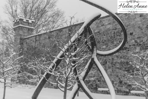 Snow March 2015-4401