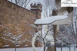 Snow March 2015-4403