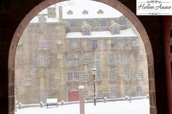 Snow March 2015-4411