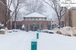Snow March 2015-4418