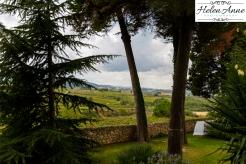 Beautiful Penedès region