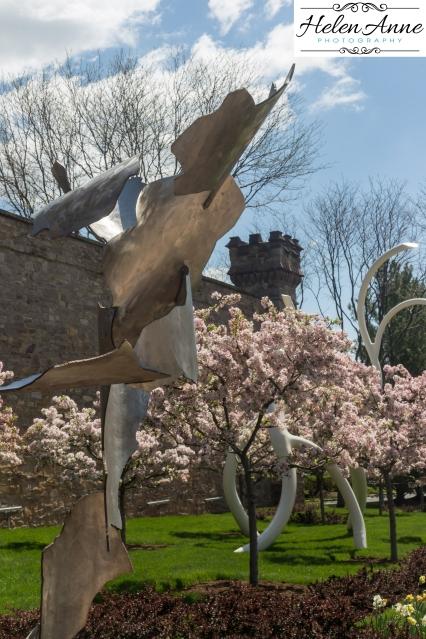 Doylestown Spring 2015-4814-13