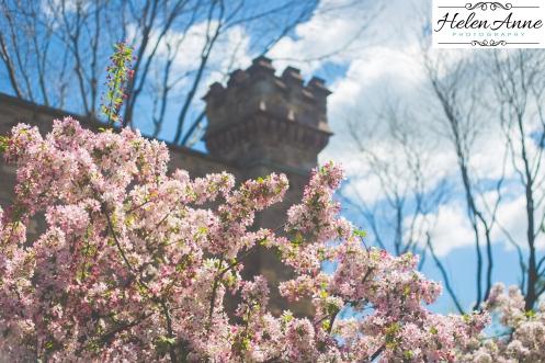 Doylestown Spring 2015-4827-23