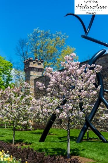 Doylestown Spring 2015-4838-30