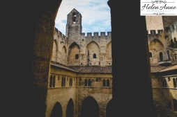 Provence and Paris 2015-5657-11