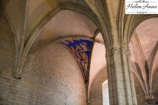 Provence and Paris 2015-5685-33