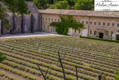 Provence and Paris 2015-6060-3