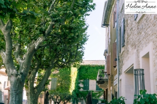 Provence and Paris 2015-6300-1
