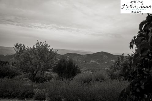 Highest vineyard in Rhone