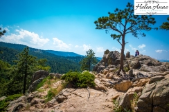 Rocky Mountain-8986-13