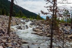 Rocky Mountain-9011-14