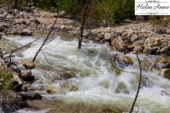 Rocky Mountain-9012-15