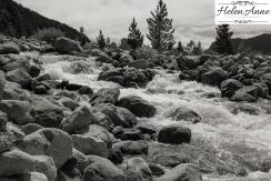 Rocky Mountain-9020-20