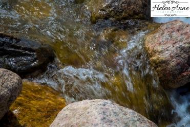 Rocky Mountain-9021-21