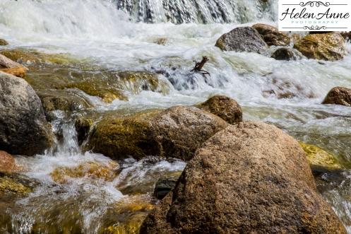 Rocky Mountain-9024-24