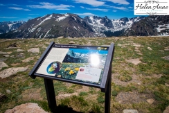 Rocky Mountain-9047-35