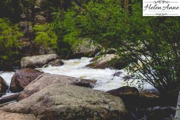 Rocky Mountain-9061-44