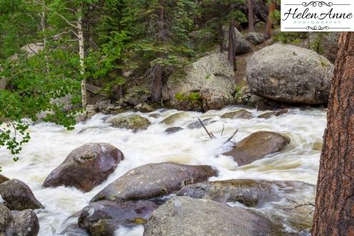 Rocky Mountain-9063-45