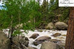 Rocky Mountain-9064-46