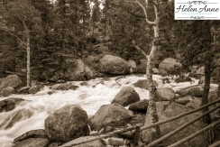 Rocky Mountain-9066-47