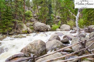 Rocky Mountain-9068-48