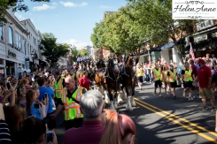 Clydesdales Doylestown 2016-9808-3