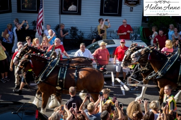 Clydesdales Doylestown 2016-9870-20